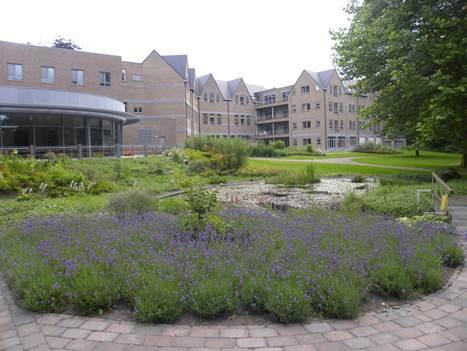 Vzw Ouderenzorg ZCS campus Mariënhove